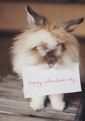 Doctor Cupid: Ten epic ways to make the most of spending valentine's day at home
